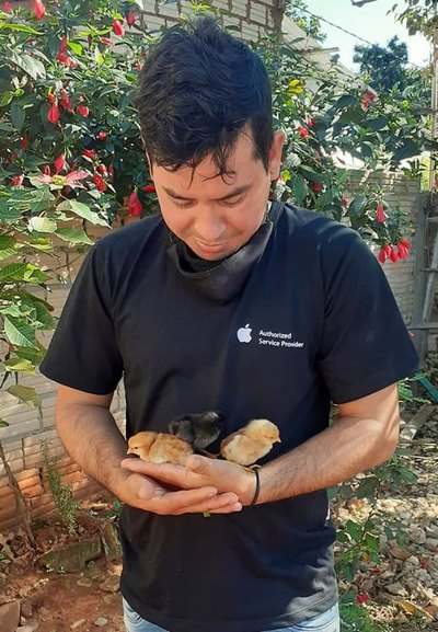 Creó incubadora que le dio 36 pollitos