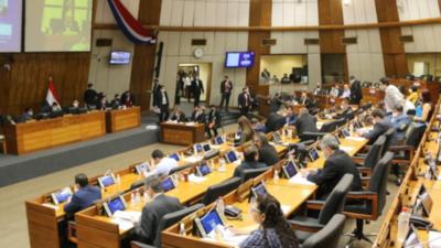 Diputados sancionan proteger propiedades de excombatientes