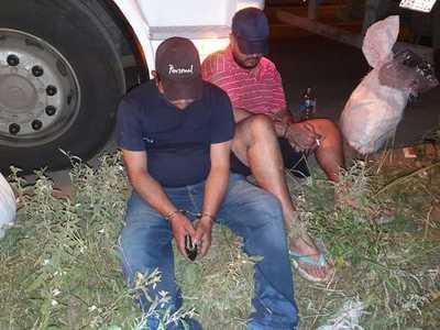 Incautan precursores de droga que podían producir hasta 17 toneladas de cocaína