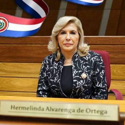 Líder del llanismo en el Senado ve proyección tras anuncio de unión de bloque opositor