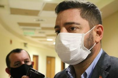 Mario Abdo debería ver las denuncias contra Friedmann por el bien del Gobierno, sostiene Alliana