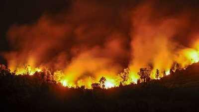 Incendios provocados, ríos contaminados, derrames tóxicos: 0,6 % de presupuesto para combatir