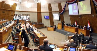Cámara de Diputados no resuelve sobre veto a anulación de facturas de ANDE y ESSAP