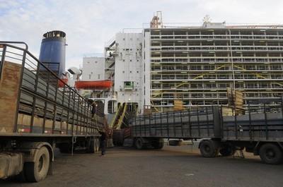 Empresa egipcia manifestó interés de importar 90.000 terneros en pie de Paraguay