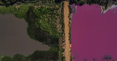Impunidad ambiental: laguna en Limpio se tiñe de rojo y su ecosistema agoniza