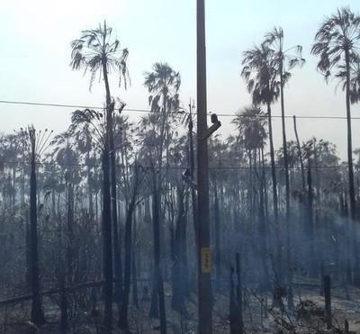 Quemazón afectó servicio de abastecimiento de energía eléctrica en Fuerte Olimpo
