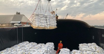 Por bajante del río, se exportará arroz en tren a Buenos Aires