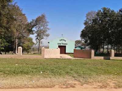 Destruyen plantación de marihuana en predio de una iglesia – Prensa 5
