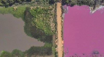 Laguna se hizo roja por químicos