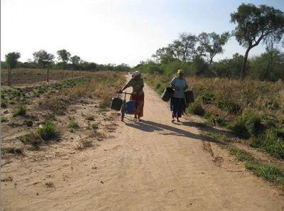 Declaran emergencia agrícola y ganadera en Guairá, Paraguarí y todo el Chaco paraguayo
