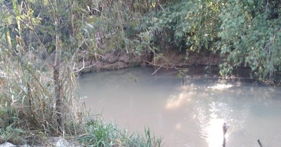 Emblemático arroyo Yhaguy se contamina y temen que termine como laguna en Limpio