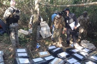 Destruyen cerca de 3 toneladas de marihuana tipo marroquí en Capitán Bado