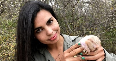 El pichiciego aparecerá en nuevo ciclo de Paraguay Salvaje