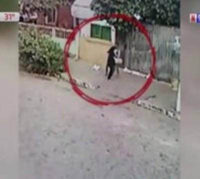 Presunto asaltante ataca brutalmente a joven