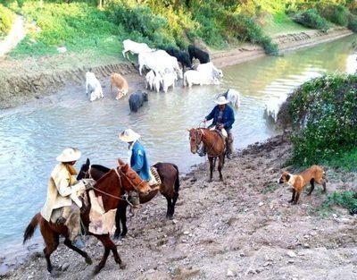Río Pilcomayo lleva alivio a productores en época de sequía prolongada en el Chaco