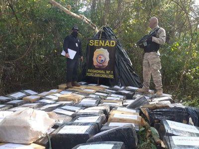 "Incautan en Capitán Bado cerca de tres toneladas de marihuana ""marroquí"""