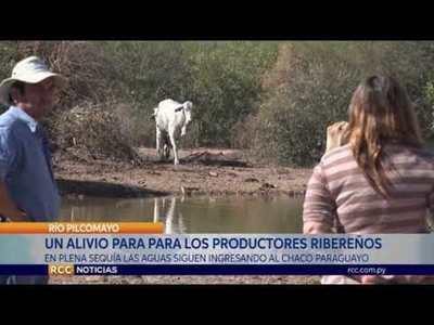 RÍO PILCOMAYO LLEVA ALIVIO A PRODUCTORES EN ÉPOCAS DE SEQUÍA PROLONGADA EN EL CHACO