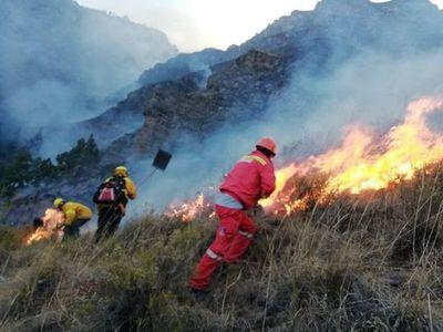 Un incendio forestal deja ocho muertos en Perú