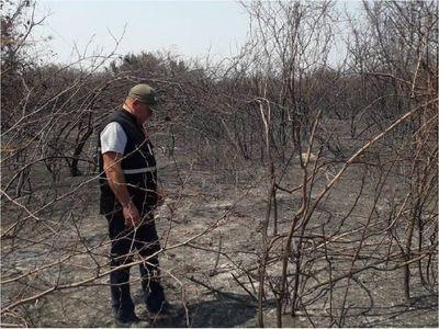 Alertan peligro extremo de incendios en franja ribereña del Pantanal paraguayo