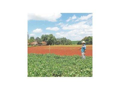 La sequía amenaza próxima campaña de siembra sojera