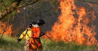 Alerta en el Pantanal: Temen propagación de incendios en el Chaco