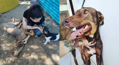 HOY / Rescate de animales: cuando el amor y la convicción son más fuertes que cualquier adversidad
