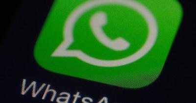 La nueva función de WhatsApp para combatir las fake news