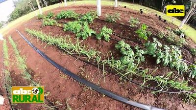 Abc Rural: Sistemas de riego para todas las necesidades