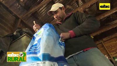 Abc Rural: Manejo nutricional de terneras al nacimiento
