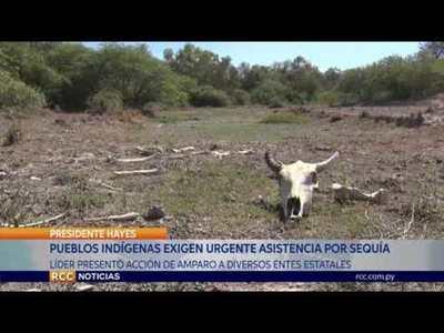 EXIGEN URGENTE ASISTENCIA A COMUNIDADES INDÍGENAS AFECTADAS POR SEQUÍA