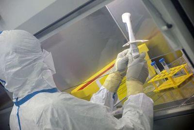 Salud reporta 202 nuevos casos de COVID-19 y tres fallecidos