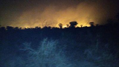 Incendios forestales arrasan  estancias en el Alto Chaco