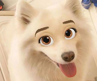 Snapchat estrena divertido filtro para perros
