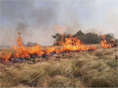 Quema de pastizal ocasiona daños a 300 hectáreas de una estancia