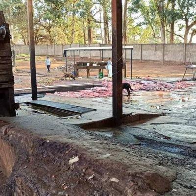 Clausuran matadero municipal del Pedro Juan por grave Delito Ambiental