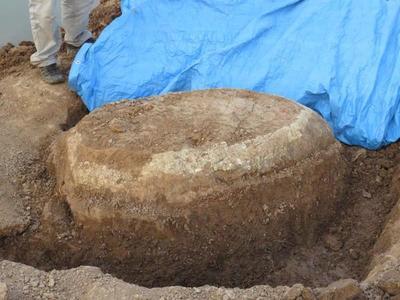 Restos fósiles hallados en el Chaco forman parte del patrimonio cultural del país