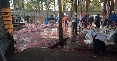 Imputan a funcionarios de salubridad y no al intendente José Carlos Acevedo, denuncian