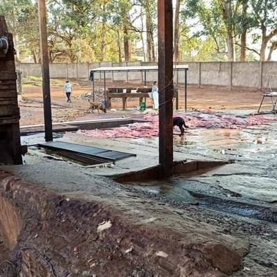 Fiscalía interviene por presunto daño ambiental en matadería municipal y solicitará clausura del local