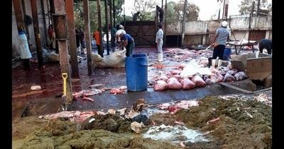 Fiscalía interviene por presunto daño ambiental en matadería municipal y pedirá su clausura