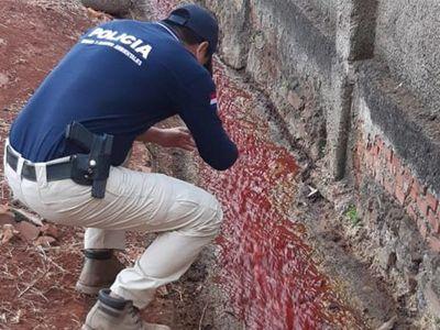 Intervienen matadería municipal de PJC e imputan a funcionario
