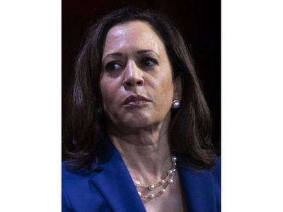 Biden elige a senadora como compañera