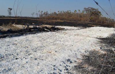 Incendio forestal arrasa con varios establecimientos del Alto Paraguay