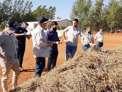 Empresa beneficiada por Ministro, fracasa en  cultivo de cáñamo y pone en riesgo el año agrícola