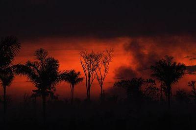 """Bolsonaro dice que es """"mentira"""" que incendios estén arrasando parte de Amazonía"""