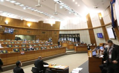 HOY / Diputados aprueba veto parcial del Ejecutivo que anula facturas de ANDE y ESSAP