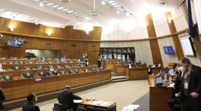 Diputados aprueba veto parcial del Ejecutivo que anula facturas de ANDE y ESSAP