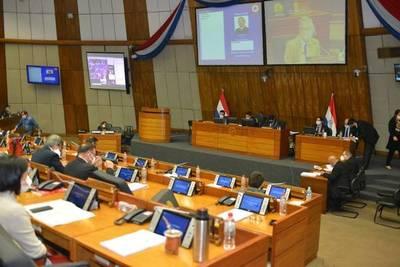 Diputados aceptan veto parcial del Ejecutivo sobre ley que pretendía cancelar facturas de la ANDE