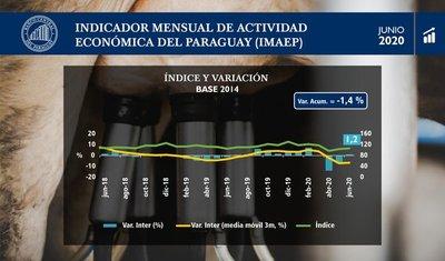 En junio la actividad económica registró un crecimiento interanual