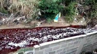 MADES interviene en caso de arroyo que se tiñó de rojo en San Lorenzo