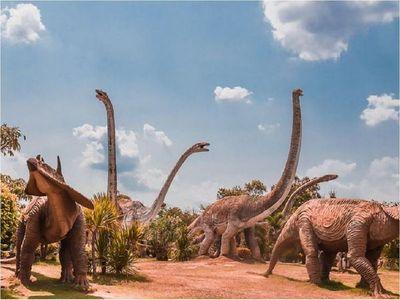 Hallazgo de dientes de dinosaurio avala teoría sobre el Cretácico
